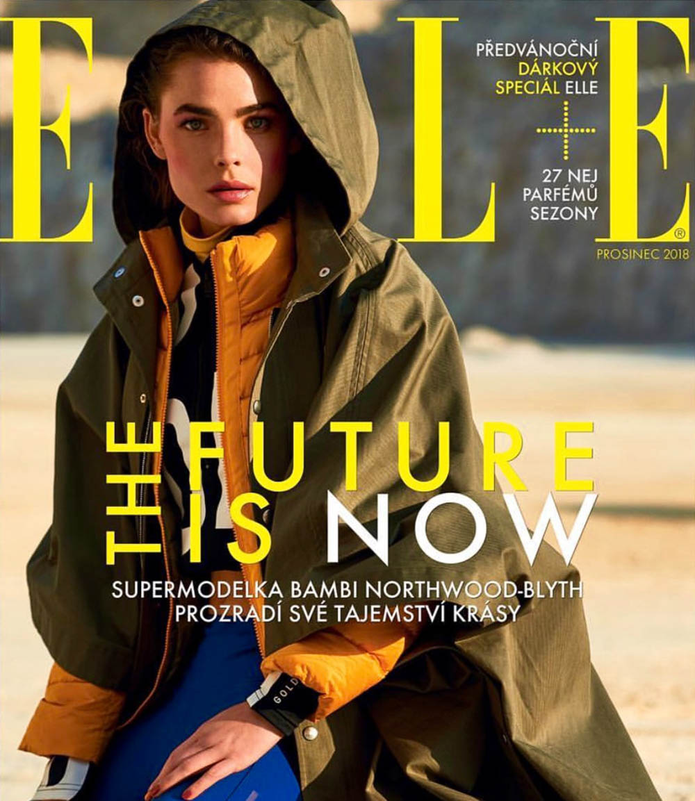 Bambi Northwood-Blyth covers Elle Czech December 2018 by Andreas Ortner