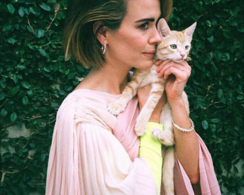 Sarah Paulson covers Flaunt Magazine Issue 163 by Gia Coppola