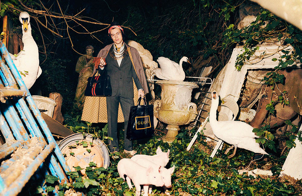 Gucci Pre-Fall 2019 Men's Tailoring Campaign with Harry Styles